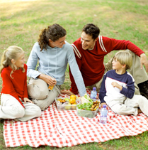 What to Include in Your Picnic Basket