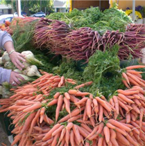 Top 10 Reasons Why I Love the Farmer's Market
