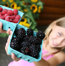 How To Help Your Child Choose Foods Wisely