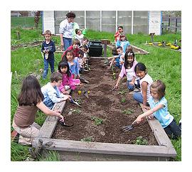 garden based learning