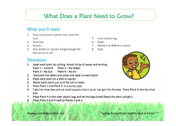 what does a plant need to grow.jpg