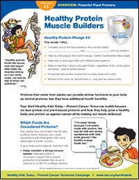 Healthy Protein Muscle Builders