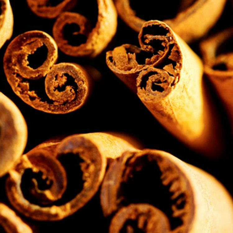 close up image of cinnamon sticks