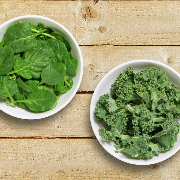 kale vs spinach image with both greens in bowls