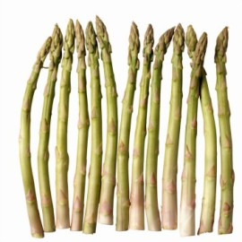 asparagus HP.jpg