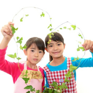 Raising Healthy Eaters Through School Nutrition Education