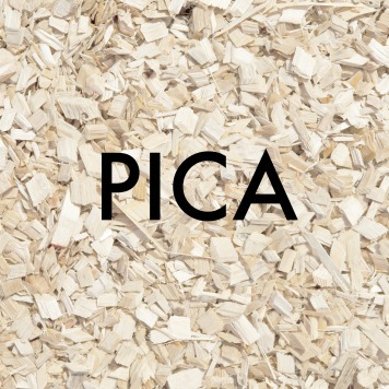 Pica in Toddlers and Preschoolers