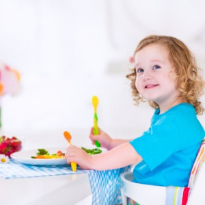 Sample Day of Meals for a 2-Year-Old Child