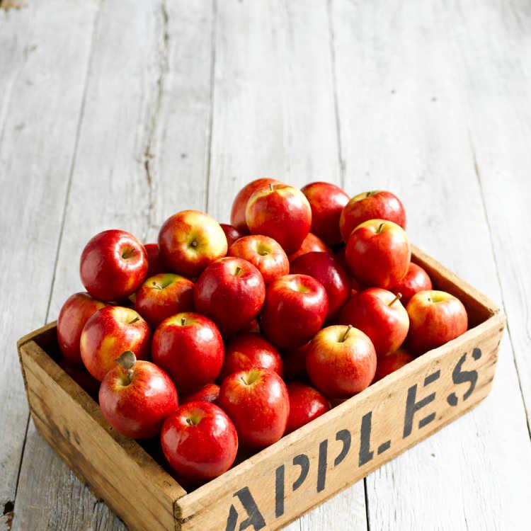 Apples in bin