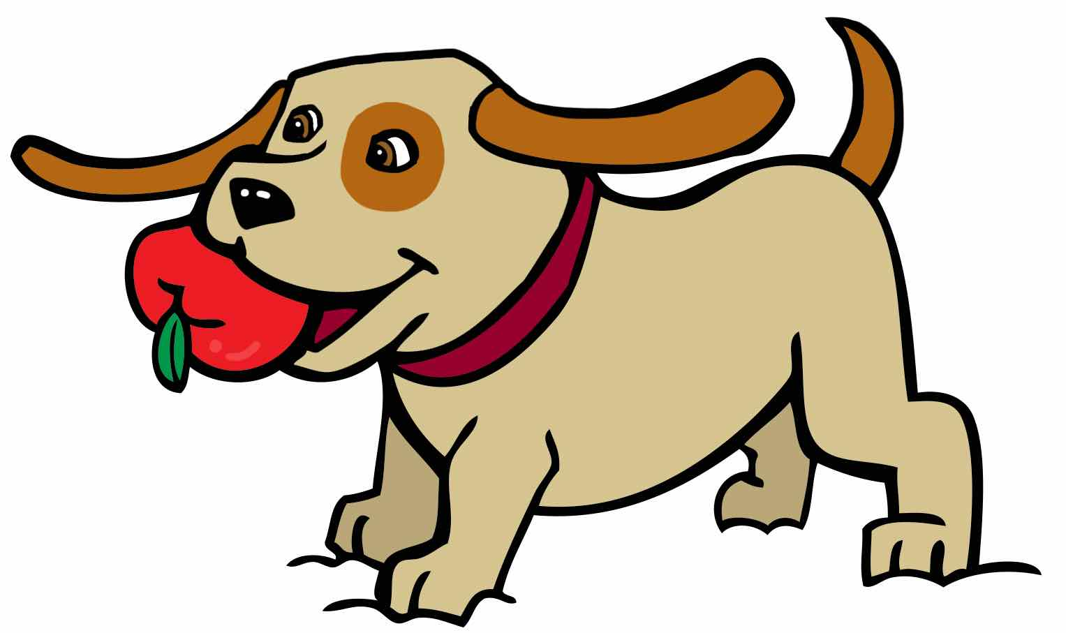 Cinnamon the dog with a red apple in his mouth