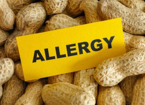 What if Peanuts Could Cure Peanut Allergies?