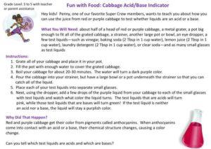 Cabbage Acid Base Indicator kids activity superkids nutrition