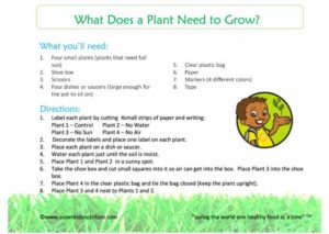 What Does a Plant Need to Grow activity sheet superkids nutrition